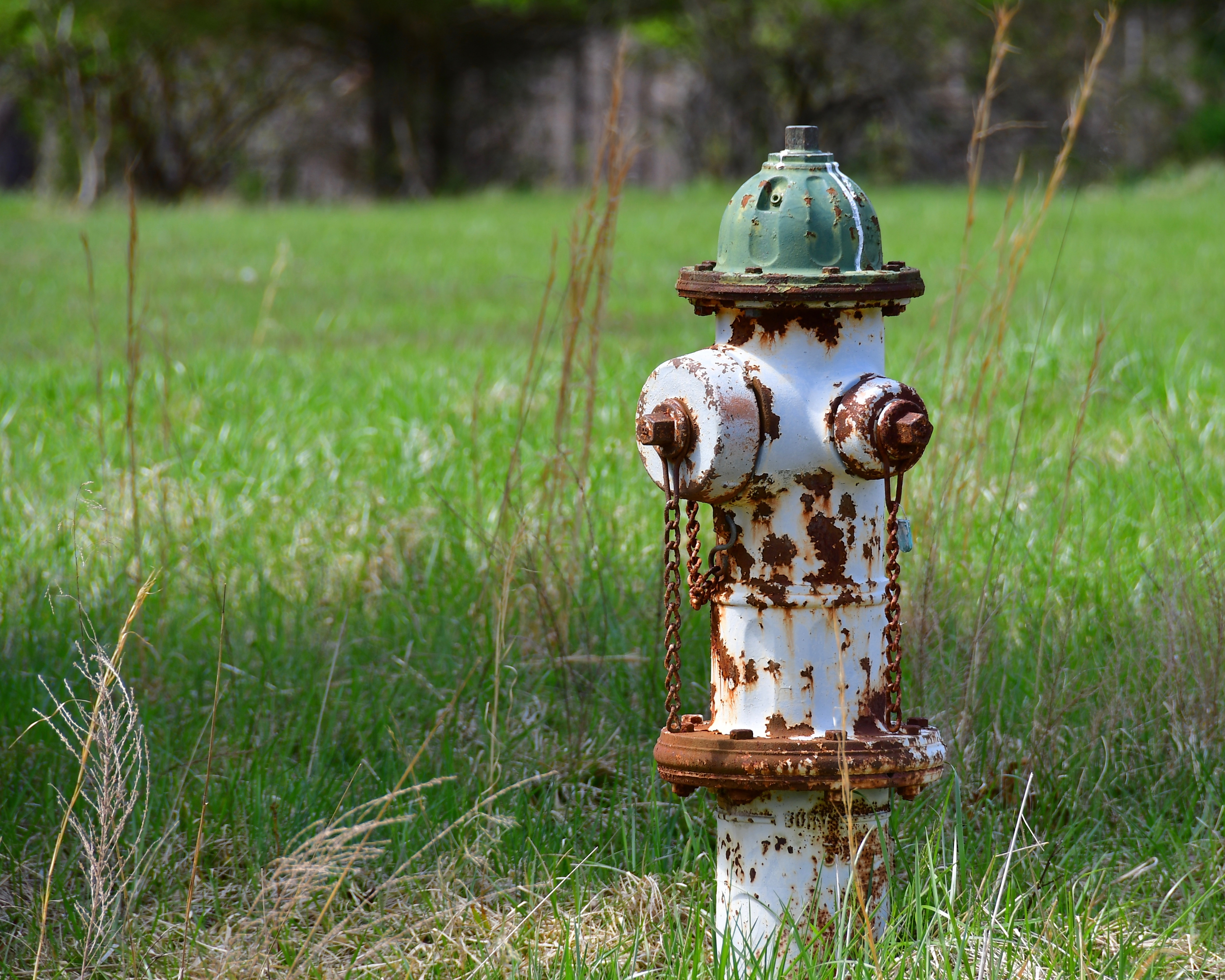 Rusted Fireplug